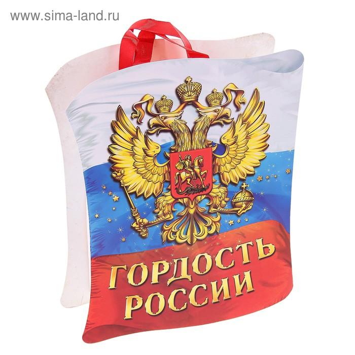 Пакет открытка с тиснением «Гордость России», ML 27 х 23 х 8 см
