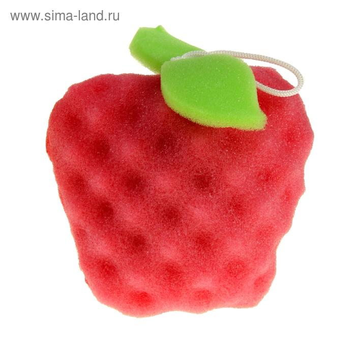 """Губка """"Веселые фрукты. Яблоко"""", цвета МИКС"""