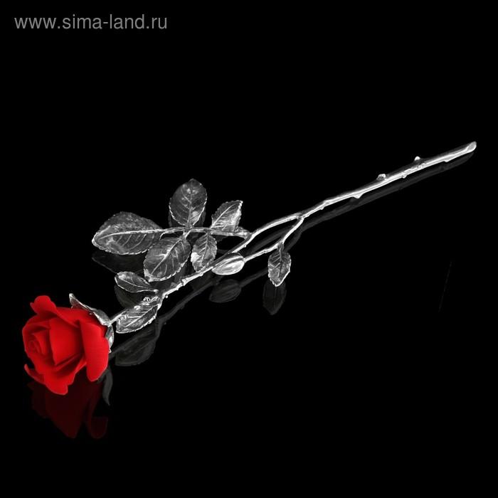 Декоративная роза Med Dolly