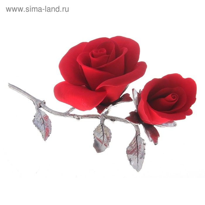 "Декоративная роза ""Две Сестрички"""