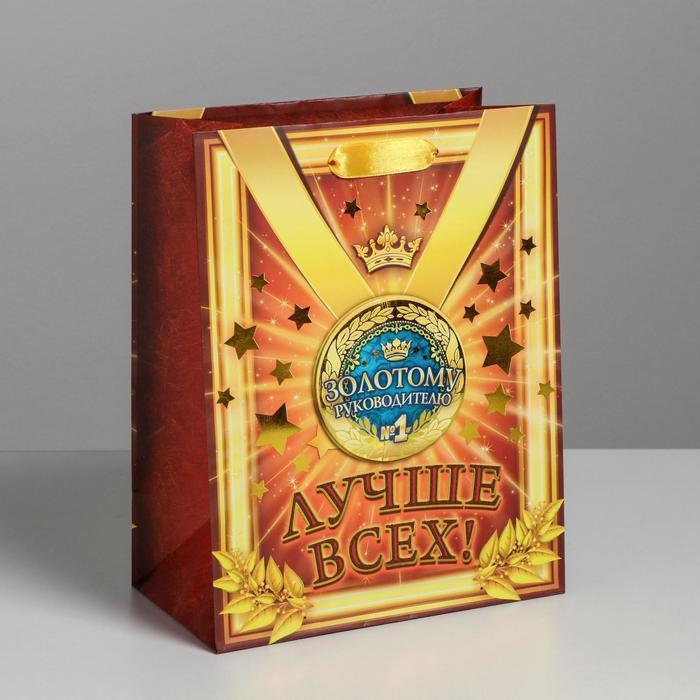 Пакет ламинат «медаль коллаж Золотому руководителю», MS 18 х 23 х 8 см