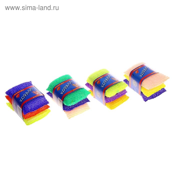 """Набор губок бытовых """"Коралл"""", 3 шт, цвет МИКС"""