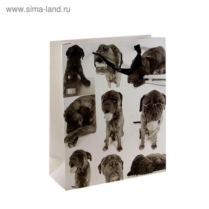 """Пакет ламинированный """"Серьезный пес"""""""