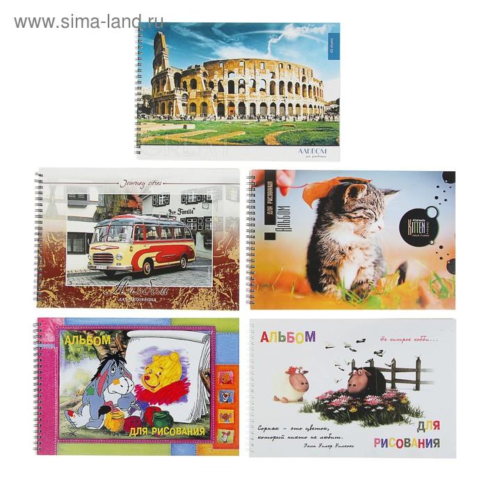 Альбом для рисования А4, 40 листов на гребне, обложка картон 240 г/м2, УФ-лак, блок ВХИ 160 г/м2, 2 вида МИКС