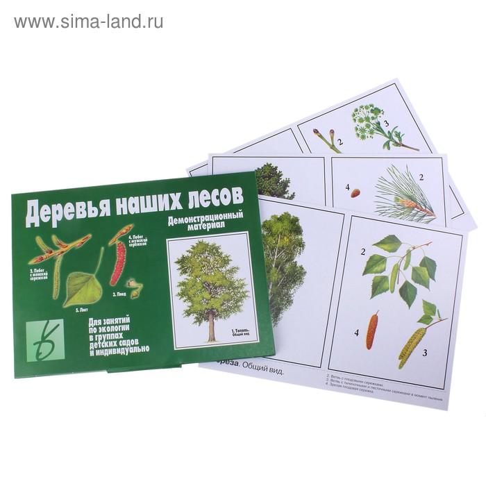 """Обучающие карточки """"Деревья наших лесов"""""""