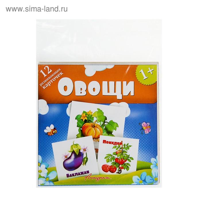 Развивающие карточки для малышей. Овощи (12 штук)