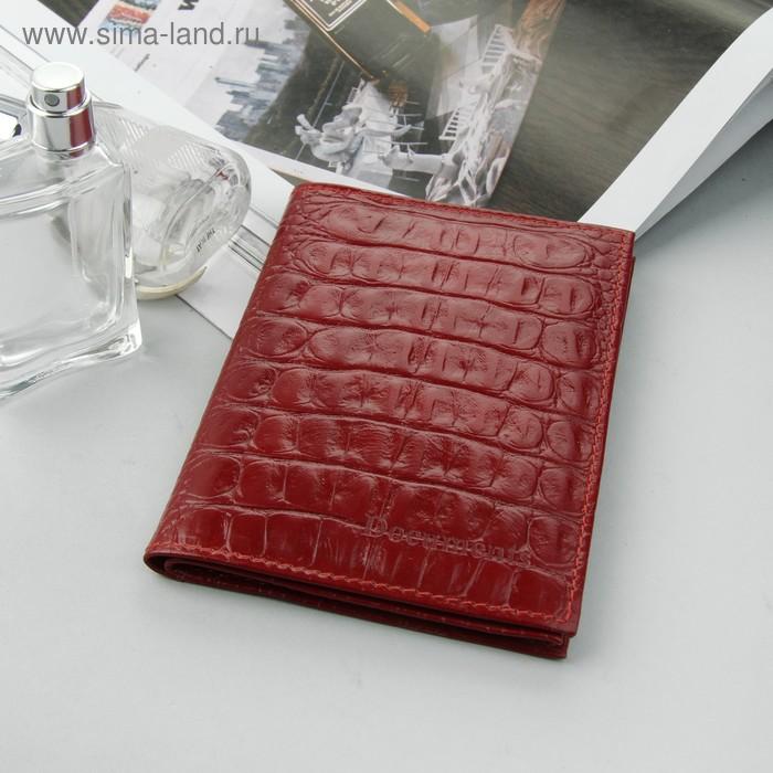 Обложка для автодокументов и паспорта, красный кайман