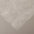 Материал укрывной, 10 х 1.6 м, плотность 30 г/м², УФ, белый