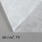 Материал укрывной, 10 х 3.2 м, плотность 60 г/м², УФ, белый