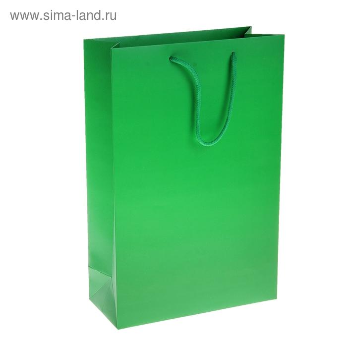 Пакет ламинированный 210гр, цвет зеленый (УЦЕНКА)
