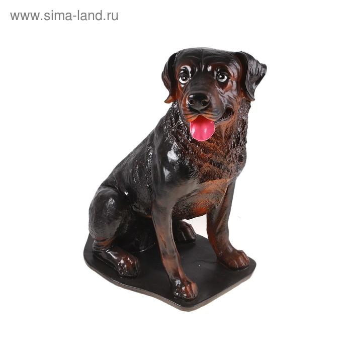 "Сувенир ""Собака Ротвейлер"" на подставке"
