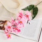 """Цветы искусственные """"Розовая орхидея Гуарианте"""""""