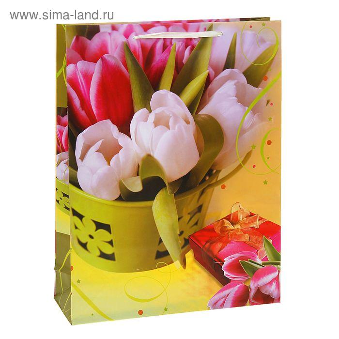 """Пакет ламинированный """"Тюльпаны"""""""