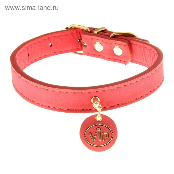 Ошейник нубук с медальоном VIP (красный с фурнитурой золото) 2,0*40 см