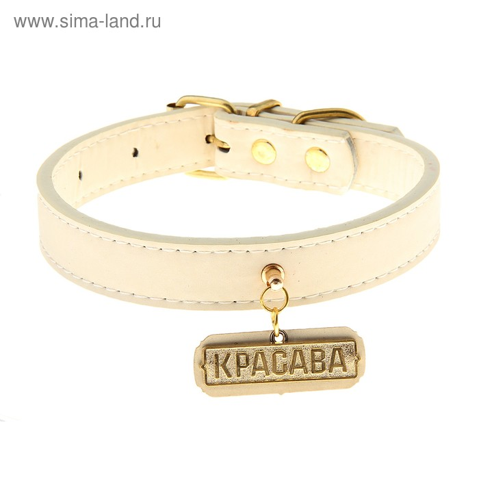 Ошейник нубук с медальоном Красава (белый с фурнитурой золото) 2,0*40 см