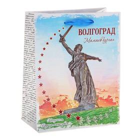"""Пакет подарочный MS """"Волгоград"""""""