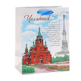 """Пакет подарочный MS """"Челябинск"""""""