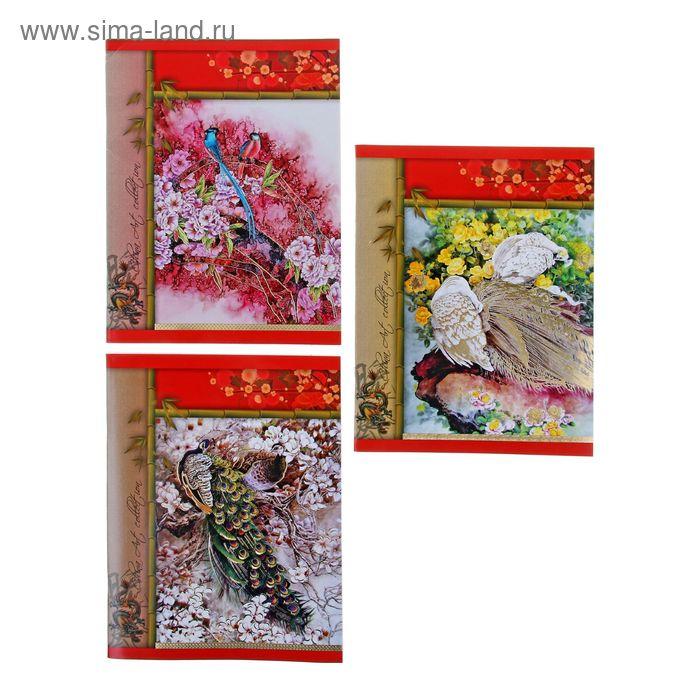 """Тетрадь 48 листов клетка """"Искусство Китая"""", картонная обложка, тиснение, МИКС"""