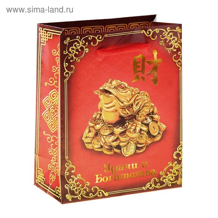 Пакет ламинат вертикальный с тиснением «Удачи и богатства»(тиснение), MS 18 х 23 х 8 см