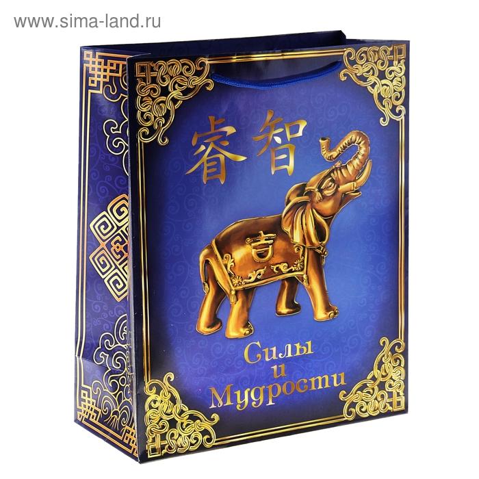 Пакет ламинат вертикальный с тиснением «Силы и мудрости», MS 18 х 23 х 8 см