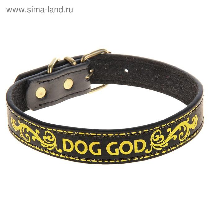 """Ошейник из экокожи с тиснением под золото """"DOG GOD"""" 2,0 х 42 см"""
