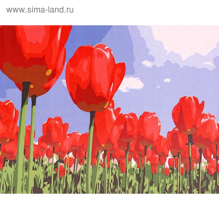 """Роспись по холсту """"Тюльпаны"""" по номерам с красками по 3 мл + кисти + инструкция + крепеж"""