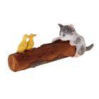 Котёнок с утятами