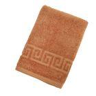 Полотенце махровое однотонное Антей цв жаренный орех 40*70см 100% хлопок 400 гр/м