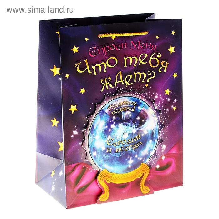 Пакет ламинат с открыткой «Магический шар», MS 18 х 23 х 8 см