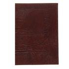 Обложка для паспорта+карман, O-81-84 9,5х0,5х13,5 игуана коричневый