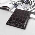Обложка для автодокументов и паспорта, коричневый скат