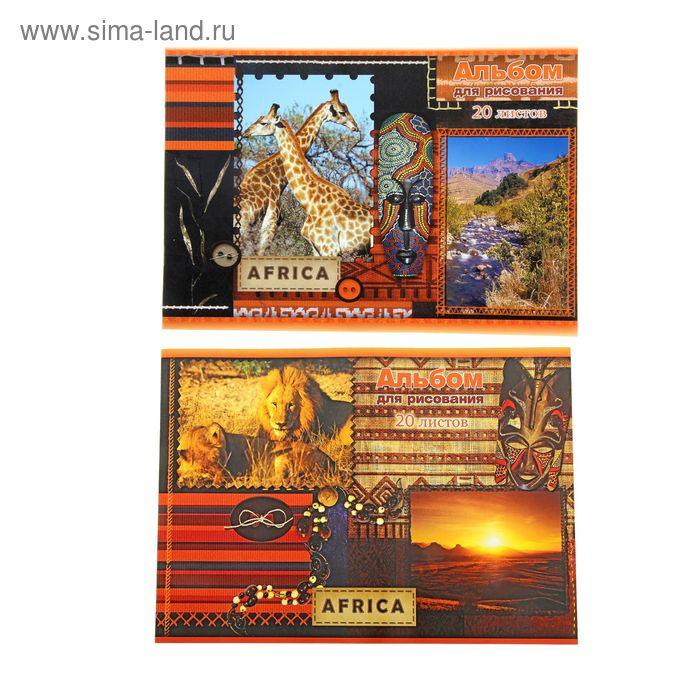 Альбом для рисования А4, 20 листов на скрепке Africa, обложка картон 190-215г/м2, блок офсет 100г/м2, МИКС