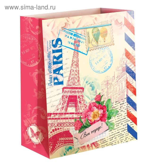 """Пакет подарочный """"Париж"""""""