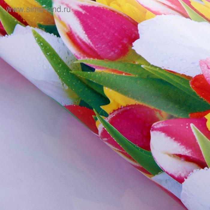 """Бумага упаковочная """"Тюльпаны после дождя"""""""