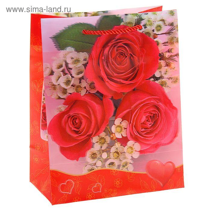 """Пакет пластиковый, 3D рисунок """"Пышные красные розы"""""""
