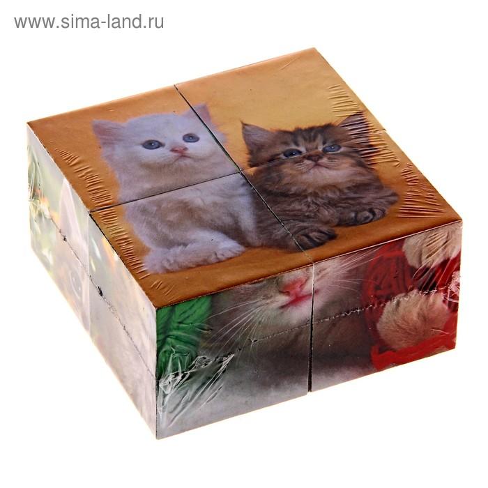 """Кубики """"Котята"""", 4 штуки"""