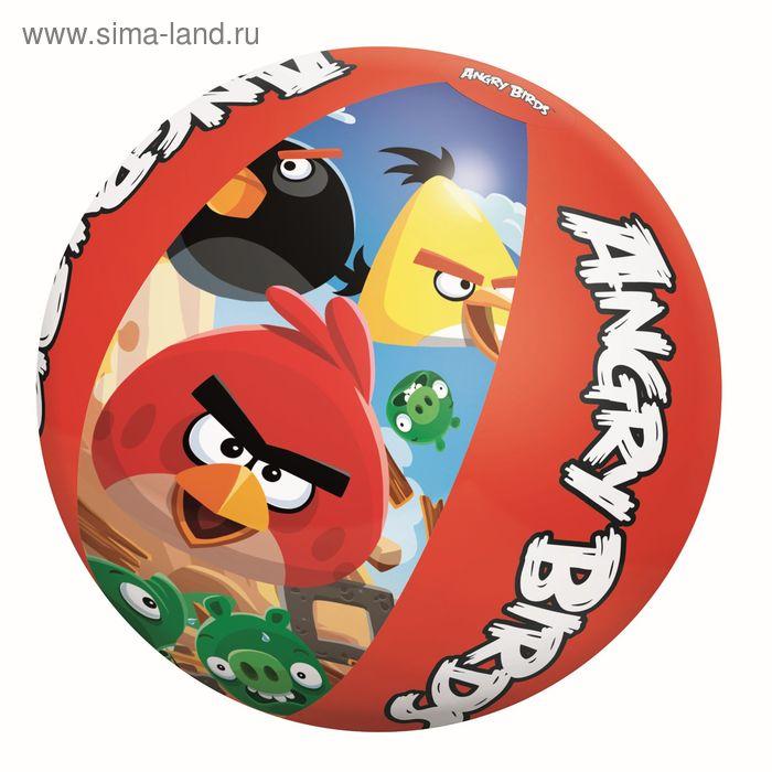 Мяч пляжный Angry Birds 51 см от 2-х лет (96101)