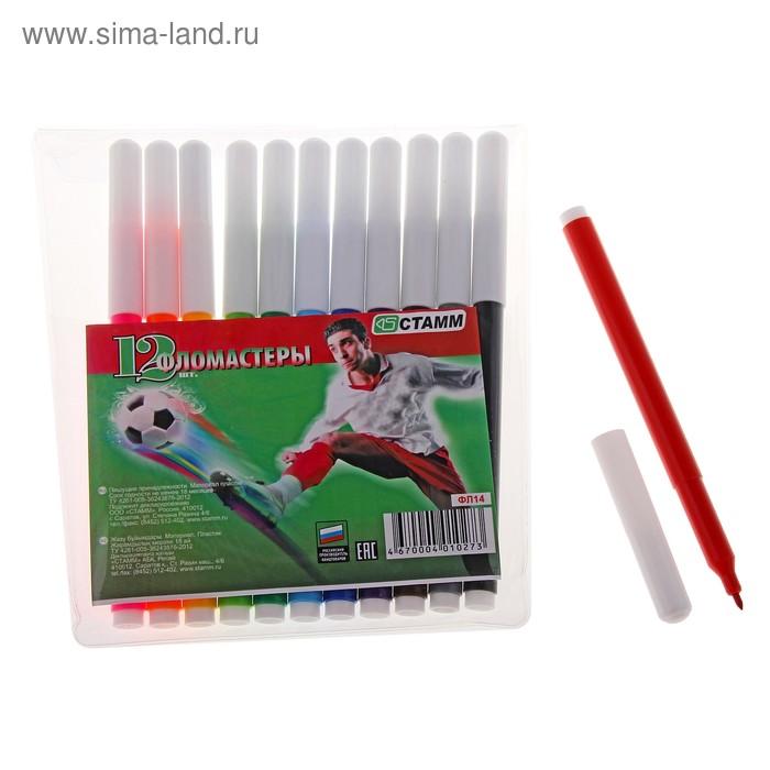 """Фломастеры 12 цветов """"Футбол"""", вентилируемый колпачок, длина линии письма более 400 м, европодвес"""