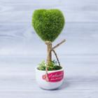 Декоративное мини–дерево «Любимой мамочке», 8 х 17 см