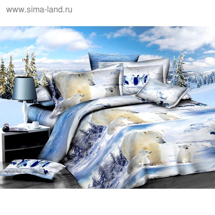 """Постельное бельё """"Этель Магнифико"""" евро Белые медведи 200*220 см, 220*230 см, 50*70+3см - 2 шт."""