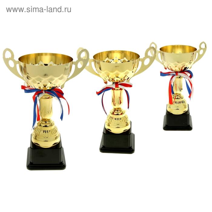 Кубок спортивный 024С