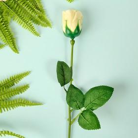 """Мыльные лепестки """"Роскошная роза"""", цвет белый"""