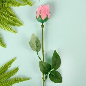 Мыльные лепестки 'Роскошная роза', цвет розовый Ош