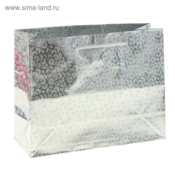 Пакет голографический, цвет серебро
