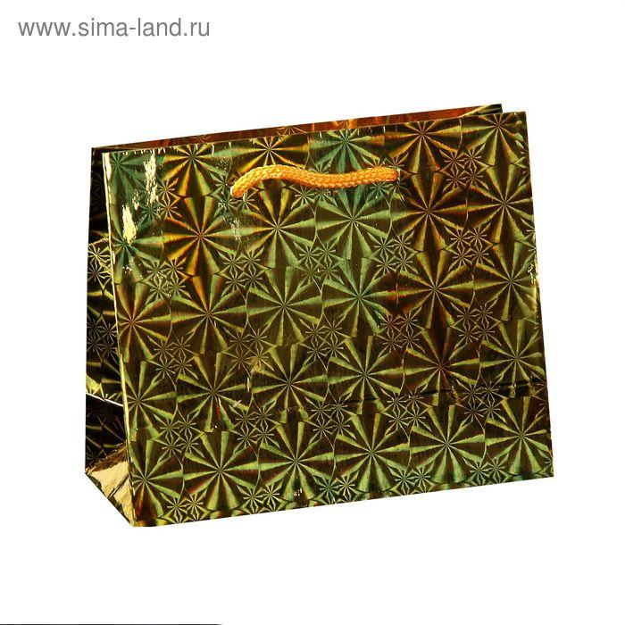 Пакет голографический, цвет золото