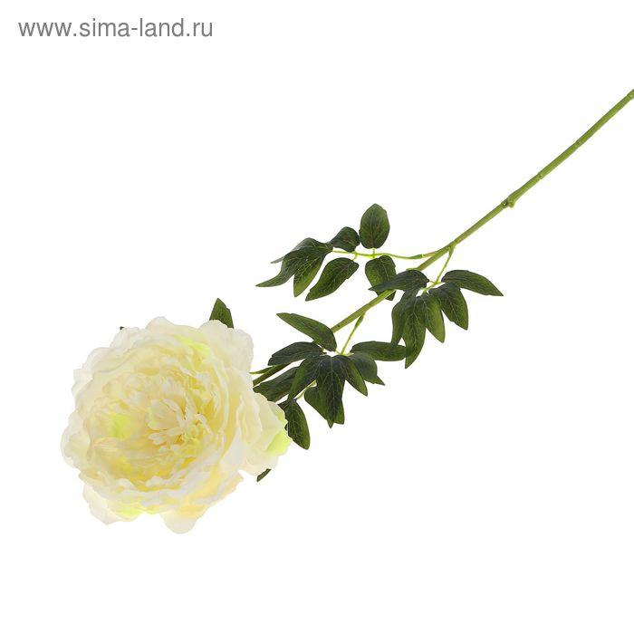 """Цветок искусственный """"Пион Этчед Самон"""" белый"""