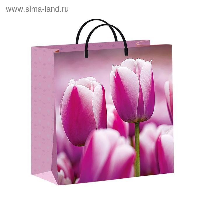 """Пакет """"Нежные тюльпаны"""", 140 мкм"""