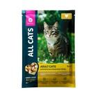 Влажный корм «ALL CATS» для кошек, курица в соусе, пауч, 85 г