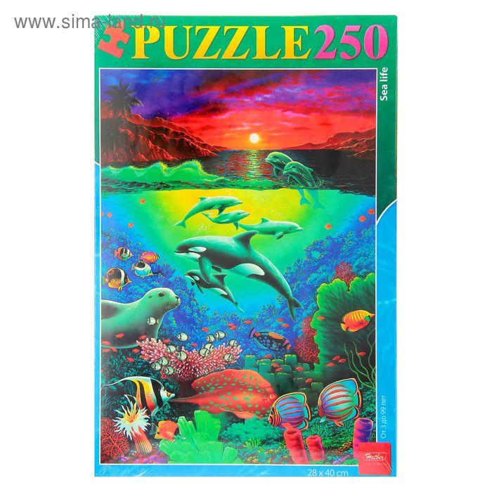 """Пазлы """"Морской мир"""", 250 элементов"""