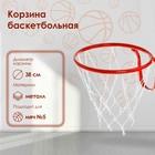 Корзина баскетбольная №5, d-380 мм, с сеткой